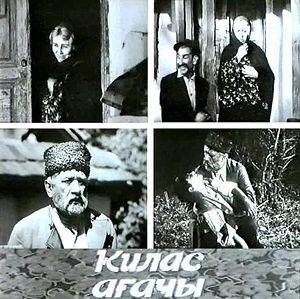 За свою творческую жизнь Тофиг Исмайлов снял более 30 художественных и документальных фильмов.
